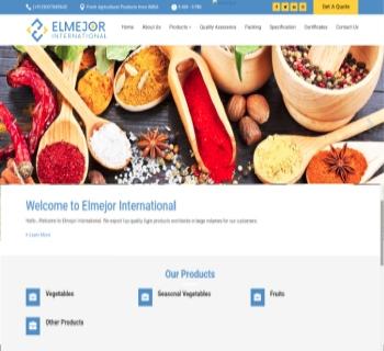 Elmejor International